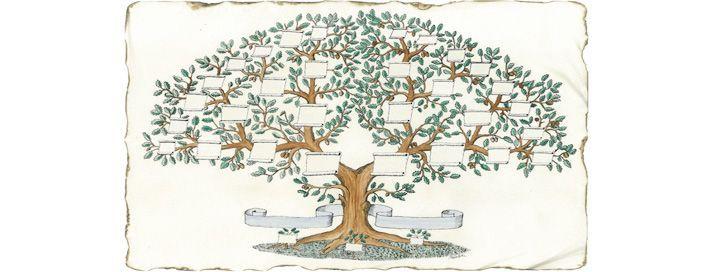 Árbol Genealógico Floral