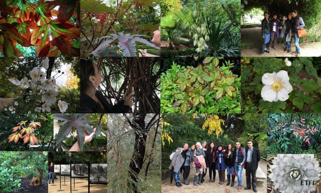 El grupo en el Real Jardín Botánico de Madrid