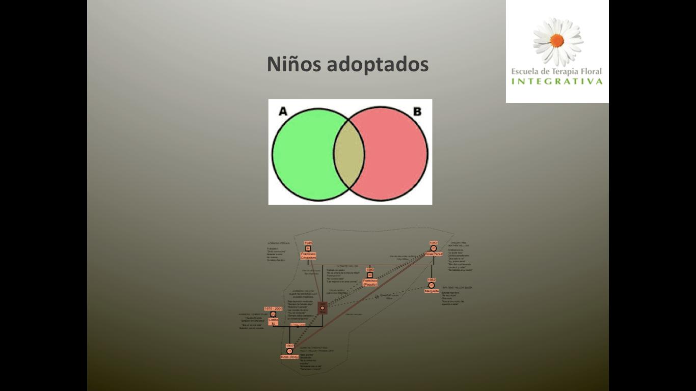 Intersección entre familia biológica y familia adoptiva