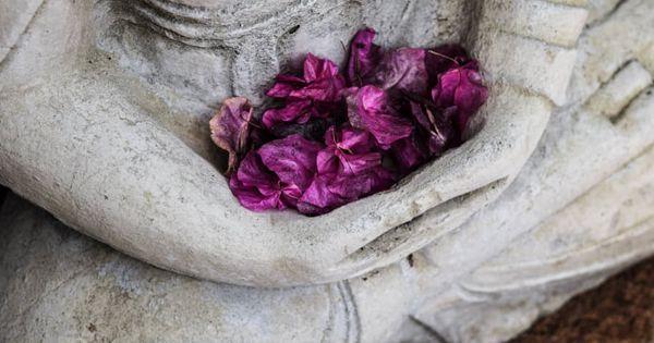 Mindfulness, flores de bach e inteligencia emocional